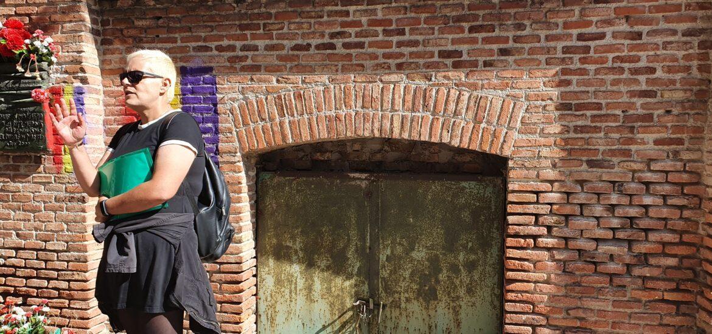 Paloma en la vieja puerta del osario